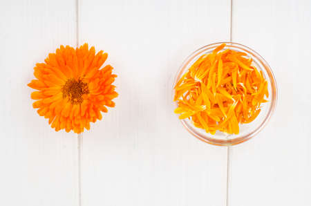Medicinal herb. Calendula officinalis flower and petals on white wooden background. Zdjęcie Seryjne