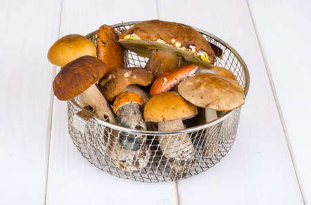 Fresh wild forest mushrooms on white wooden table.
