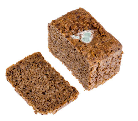 Rye bread with mold.
