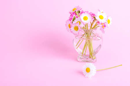 colorful Small bouquet of tender daisies. Studio Photo Stok Fotoğraf