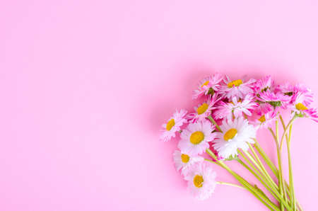 colorful Small bouquet of tender daisies. Studio Photo 免版税图像