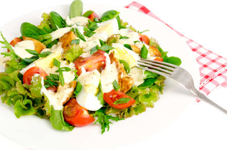 Salad of fresh vegetables, eggs, chicken meat with white sauce.