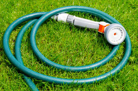 Green hose for watering lies on grass, lawn
