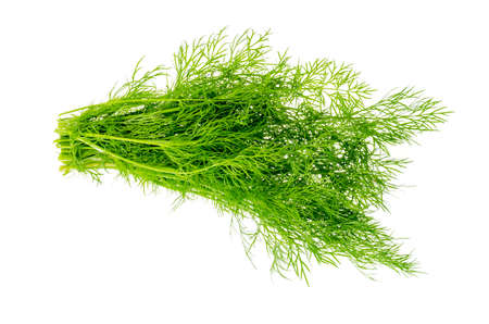 Bunch of fresh green dill isolated on white background. Studio Photo