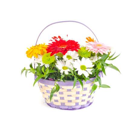 Basket with beautiful flowers isolated on white background. Studio Photo