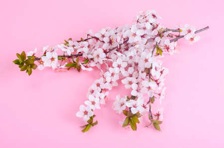 Branch with delicate white and pink flowers