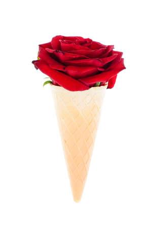 웨이퍼 아이스크림 콘에 장미