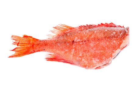 Frozen red sea bass