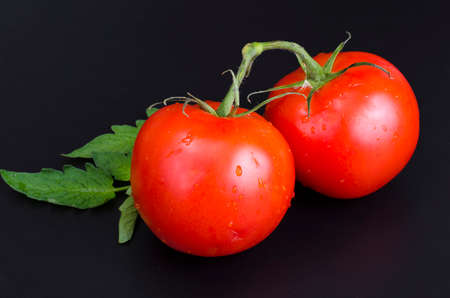 Red ripe tomatoes with water droplets on black background