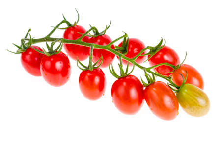 Branch with red cherry tomatoes isolated on white background. Studio Photo