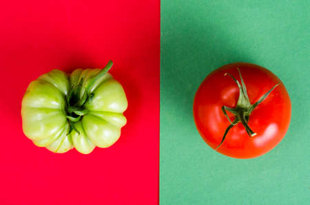 Layout with tomatoes on colored background. Studio Photo
