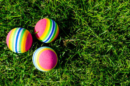 Colored little balls for cats, dogs on green grass. Studio Photo Banque d'images - 130053584