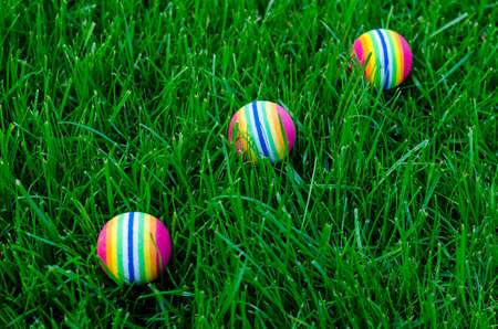 Colored little balls for cats, dogs on green grass. Studio Photo Banque d'images - 130053586