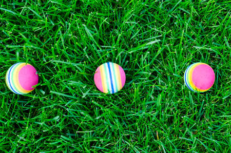 Colored little balls for cats, dogs on green grass. Studio Photo Banque d'images - 130053620