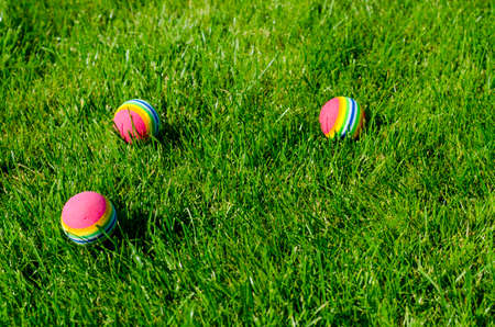Colored little balls for cats, dogs on green grass. Studio Photo Banque d'images - 130053625