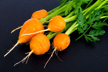 Organic farmer fresh carrots on black background. Studio Photo