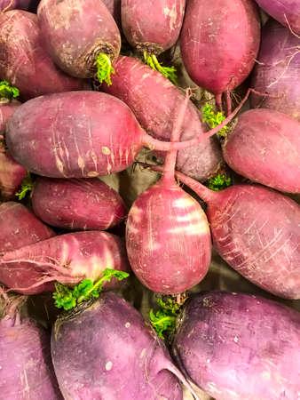 Fresh farm natural vegetables, daikon, Non-GMO. Studio Photo