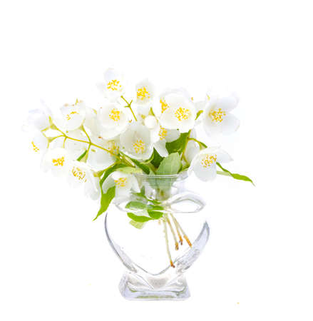 Small glass vase with white flowers. Studio Photo
