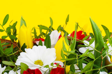 Delicious bouquet of flowers on yellow background. Studio Photo