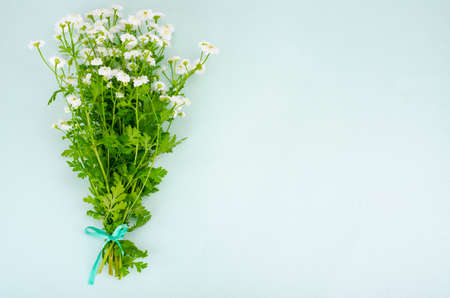 Bouquet of white small garden flowers on light green background. Studio Photo Stockfoto