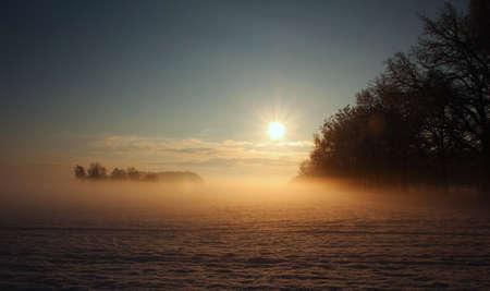 winter blues: Morning Blues