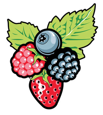 wildberry: Berries   illustration