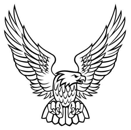 Eagle illustration Vektorové ilustrace