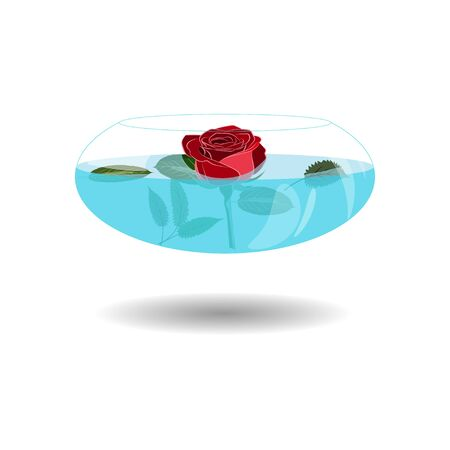 Scarlet rose in a vase of water. Vector illustration beatiful rose in nice transparent bowl with water. Single rose in vase for greeting  イラスト・ベクター素材