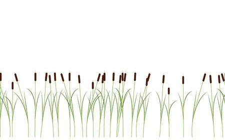 Thin reed stalks plant seamless pattern isolated on white background for cartoon or props decoration