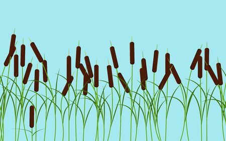 Vector reed stalks plant seamless pattern on blue sky background for landscape nature decoration and props, cartoon and nature background