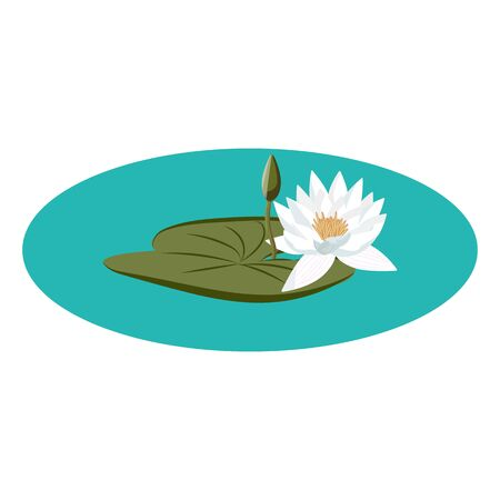 Water lily vector on the water with leaf and flower buds Ilustração