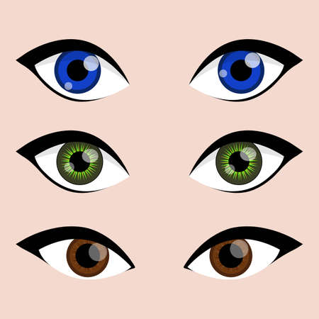 Female woman cute eyes vector collection with blue, green and brown iris color set. Cartoon and art work decoration eyes design. Vector illustration