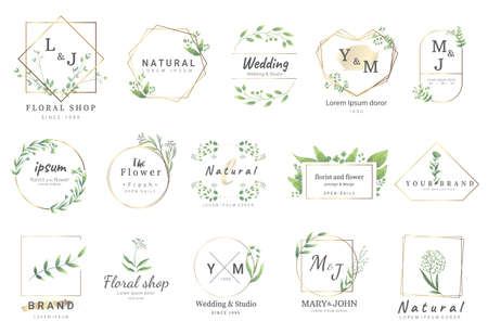 Premium floral logo templates for wedding,logo,banner,badge,printing,product,package.vector illustration Çizim