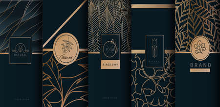 Collection of design elements of luxury products. Made with Isolated on black background. vector illustration Çizim