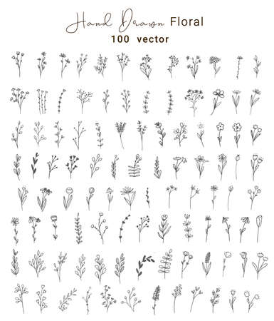 Set of vector vintage floral and leaves, hand drawn style,Decoration elements for design invitation, wedding cards, valentines day, greeting cards, vector illustration