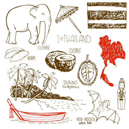 yam: Hand drawn symbols of Thailand with yam, elefant, durino, hog-nosed Kittis bat, country, boat and the beach.