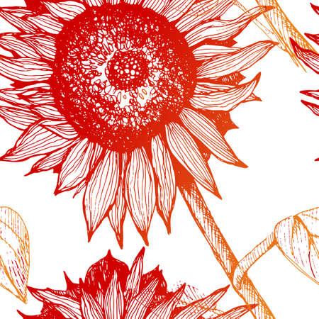 手描きのひまわり。茎と葉と花のスケッチ。広告、デザイン、包装します。ヒマワリとパターン。