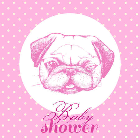 wrinkled face: Illustration for birthday newborn girl. Baby shower. Cute Pug in pink. Cards, cards, posters and invitations.