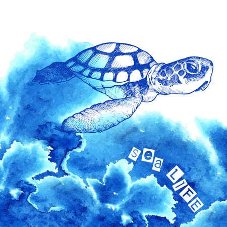 水彩画の効果で美しいカメ。ウミガメ。広告ポスター (プラモデル)海の生活をベクトルします。