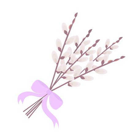 Willow bouquet bandaged with ribbon on a white isolated background.