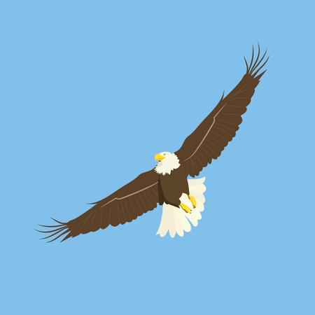 Illustrazione vettoriale. Un'aquila uccello che vola nel cielo. Modello per cartolina, poster, logo.