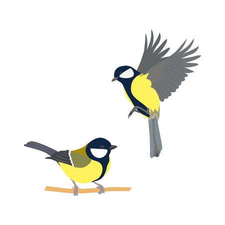 Ilustración de vector de pájaros sobre fondo blanco aislado. Ilustración de vector