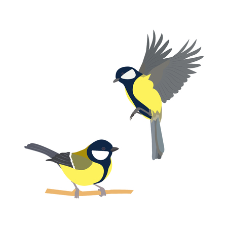 Vector illustration of birds on white isolated background.  イラスト・ベクター素材