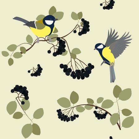 Ilustración de vector transparente con carbonero y bayas de ashberry negro. Para decoración de textiles, embalajes, papel pintado.