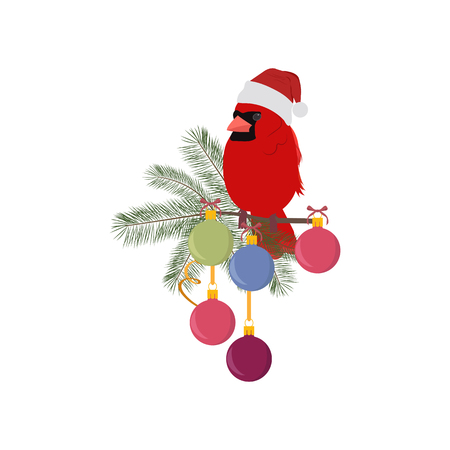 Christmas vector illustration with a cardinal bird on a fir branch decorated with balls, on a white isolated background. Template for postcard, poster, logo, web design. Stock Illustratie
