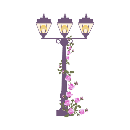Vector illustration of a street lamp entwined with roses on a white isolated background. Template for greeting cards, web design.