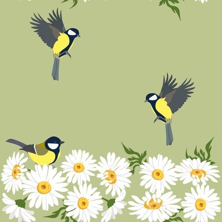 Seamless vector beautiful, summer illustration with chamomile and titmouse on a green background. For decorating textiles, packaging and wallpaper.