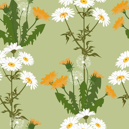 Seamless vector beautiful, summer illustration with chamomile and dandelion on a green background. For decorating textiles, packaging and wallpaper.