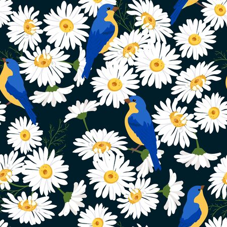 Seamless vector beautiful, summer illustration with chamomile and birds on a black background. For decorating textiles, packaging and wallpaper.