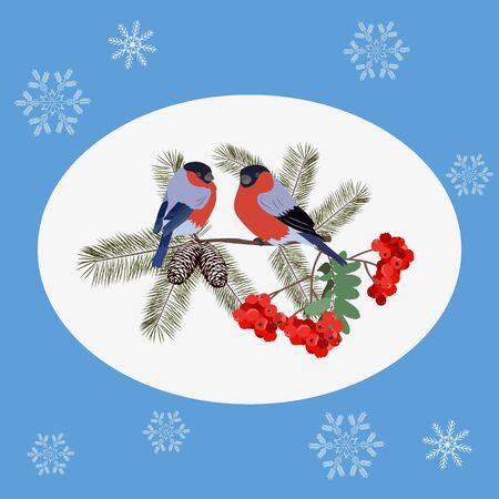 Vector Christmas illustration with berries rowan , fir branches, cones and bullfinchs. Template for postcard, poster, web design.